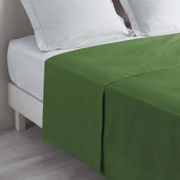 Drap plat lit 2 personnes 240 x 300 cm 100% coton 57 fils couleur Vert sapin