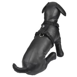 harnais reglable en pp de 50 a 70cm*largeur 20mm - noir