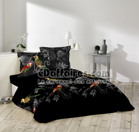 perroquet guide d 39 achat. Black Bedroom Furniture Sets. Home Design Ideas