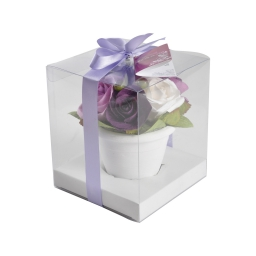 roses en pot 12.5x12.5x14.5cm parf rose cl fuschia