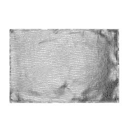 Set de table 30 x 45 cm pvc alliage Argent