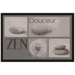 tapis d'entree rectangle 40 x 60 cm photoprint adonis