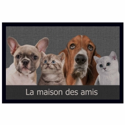 tapis d'entree rectangle 40 x 60 cm photoprint cabotins