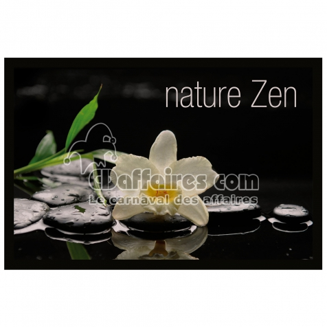 Tapis D Entree Rectangle 40 X 60 Cm Photoprint Nature Zen Cdaffaires