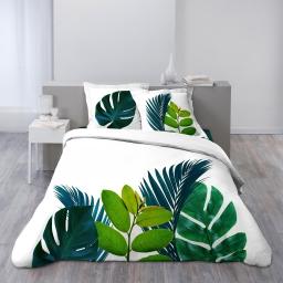 Housse de couette 260x240 cm + 2 taies d'oreiller 100% coton 42 fils dessin place brazil