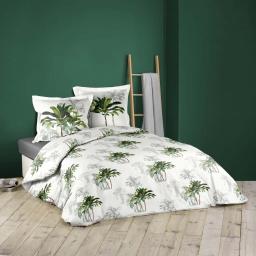 Parure de couette 240 x 220 cm + taies 100% coton tropi palmy