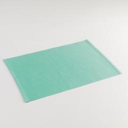 Set de table 33 x 45 cm coton uni miami Menthe